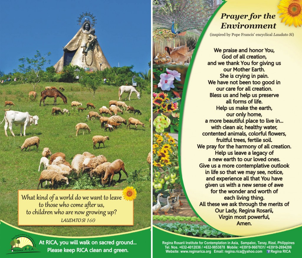 Prayer for the Environment web